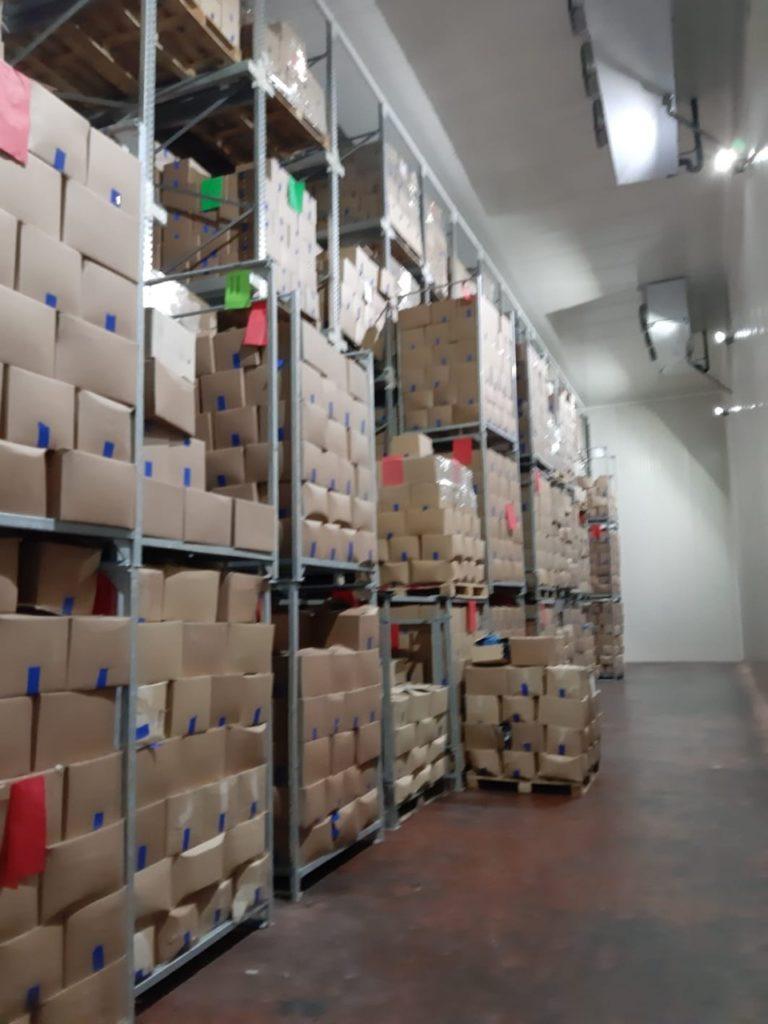 Komora za skladištenje DZ voća