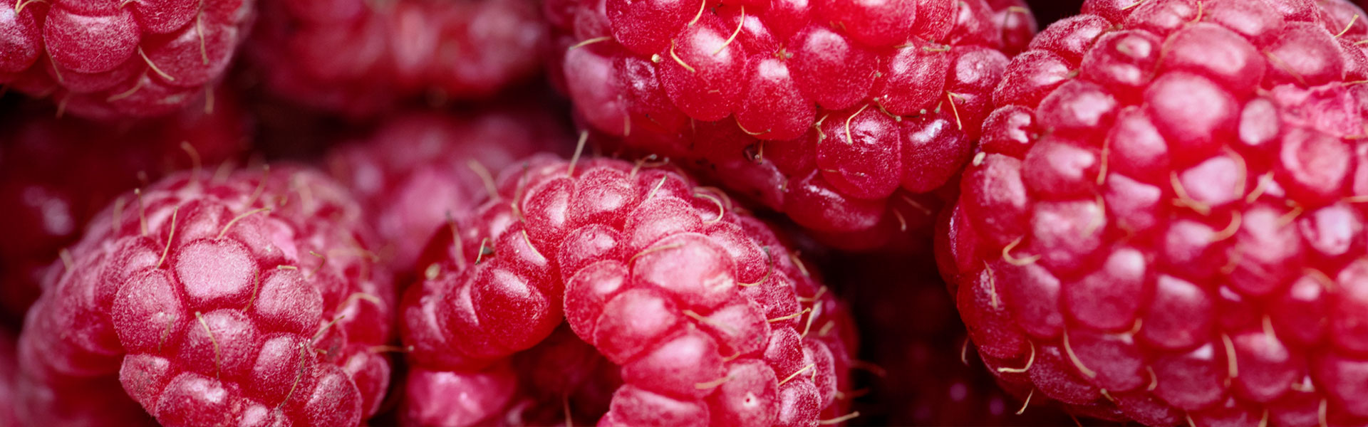 IQF fruit - deep-frozen raspberry