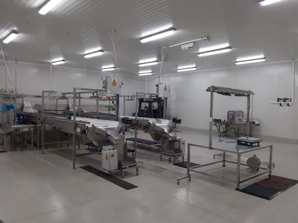 Deep frozen fruit processing equipment
