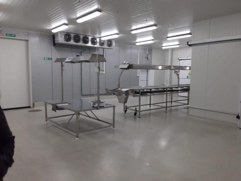 Deep frozen fruit processing equipment - conveyors